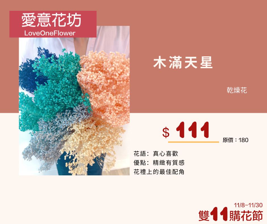 雙11乾燥花活動4